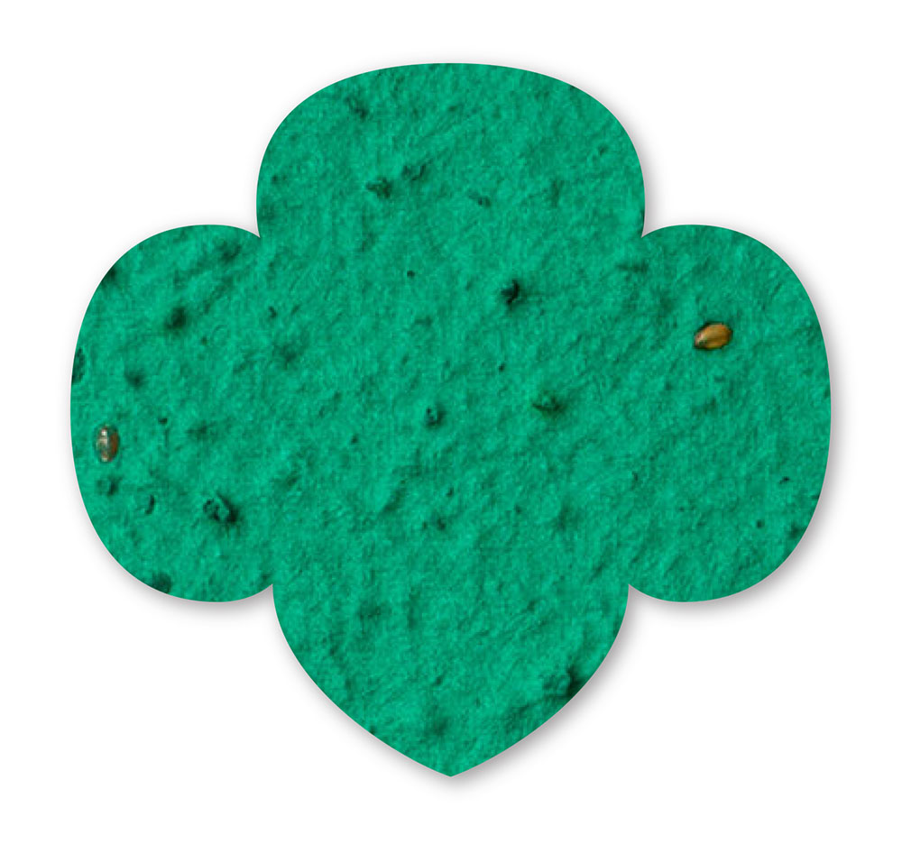 seed paper girl scout shield