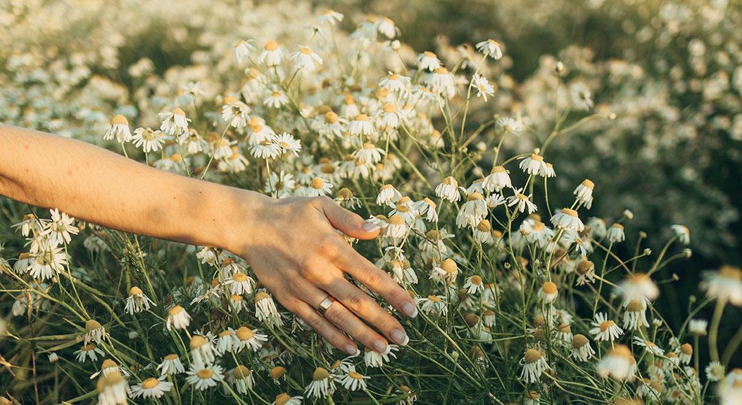positive flowers